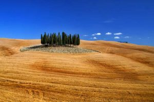 Excursions_tuscany14