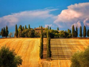 Excursions_tuscany16